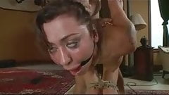Anal Slave Whore