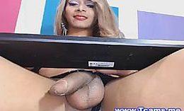 Erotic Brunette Shemale Stroking Cock