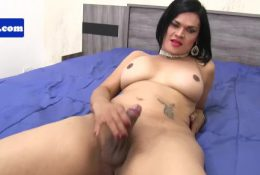 Latina shemale pulling her hard cock