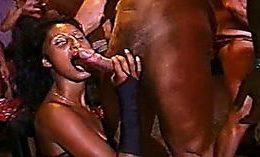 Brazilian Carnival Orgy Xxx