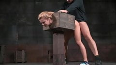 -Z19- AW Whore in a Box
