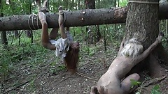 HORRORPORN – A dark side of the woods
